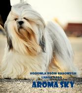 Aroma Sky FCI